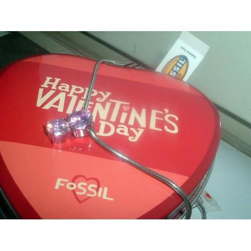Valentine s Day, Fossil halsband med 2 Zirkonia (Övrigt) från klockor4you.se